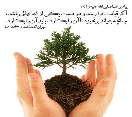 درختکاری در اسلام
