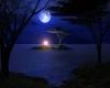 سال قمری